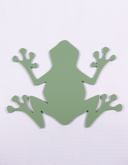 grenouille-vert-pale